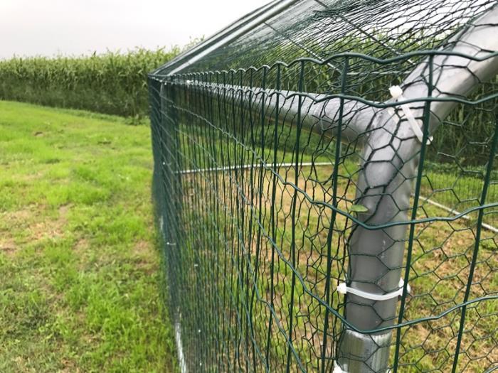 Recinzione Per Cani Giardino.Recinzioni Per Cani In Giardino Excellent Fonti Rinnovabili Anti