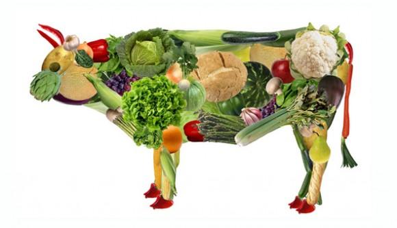 Vaca de verduras para vegetarianos