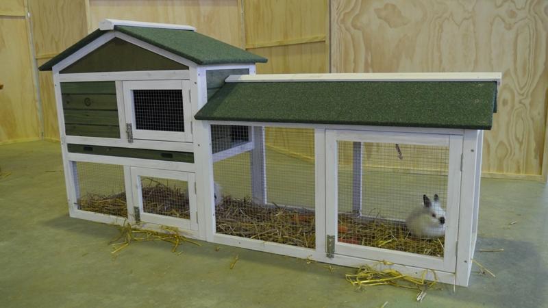Progetto ecologico orticoltura e allevamento live for Conigliera da interno